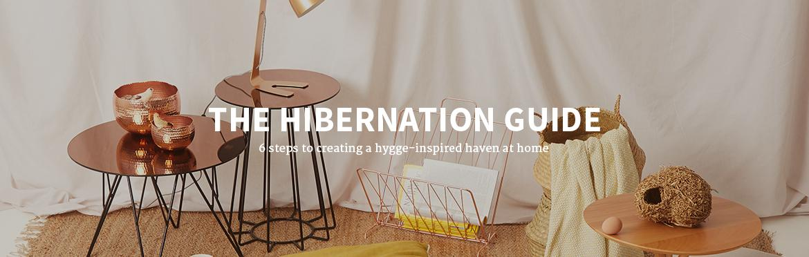 The Hibernation Guide