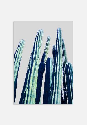 83 Oranges Cactus Art