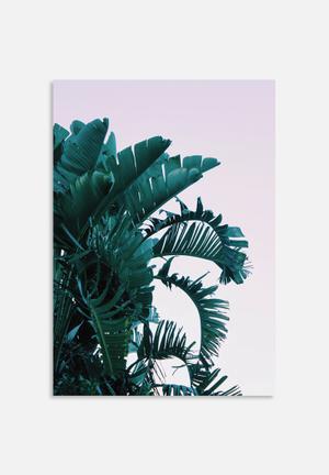 Sixth Floor Palms 2 Art