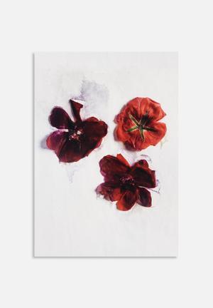 Sixth Floor Red Blooms Art