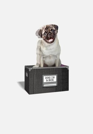 Mustard  Dog In A Box Gifting & Stationery Paper